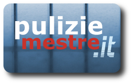Logo puliziemestre.it